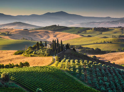 Discover Tuscany - Italy's Most Famous Wine Region