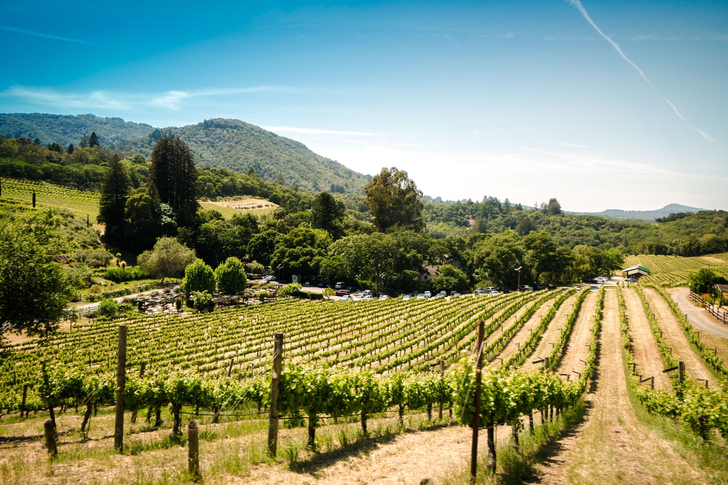 72 Hours in Sonoma