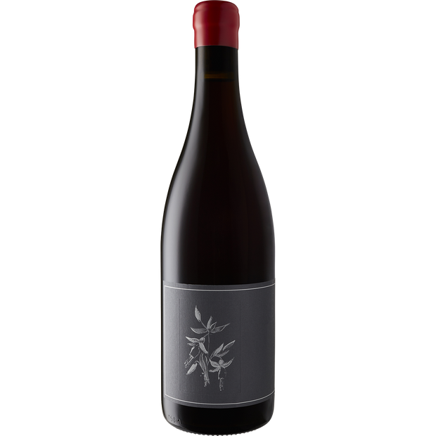 Arnot-Roberts Trousseau North Coast 2019-Wine-Verve Wine