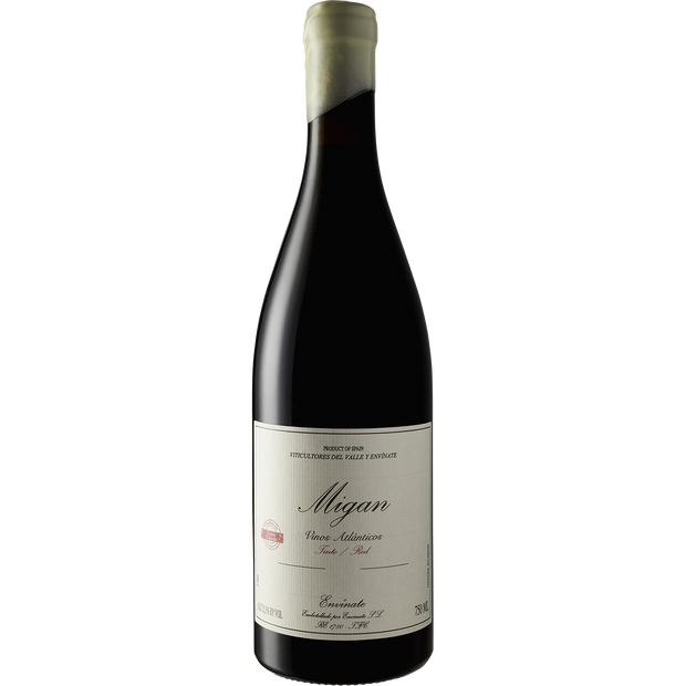 Envinate Canary Islands Tinto 'Migan' 2017-Wine-Verve Wine