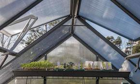 The importance of good ventilation in a greenhouse