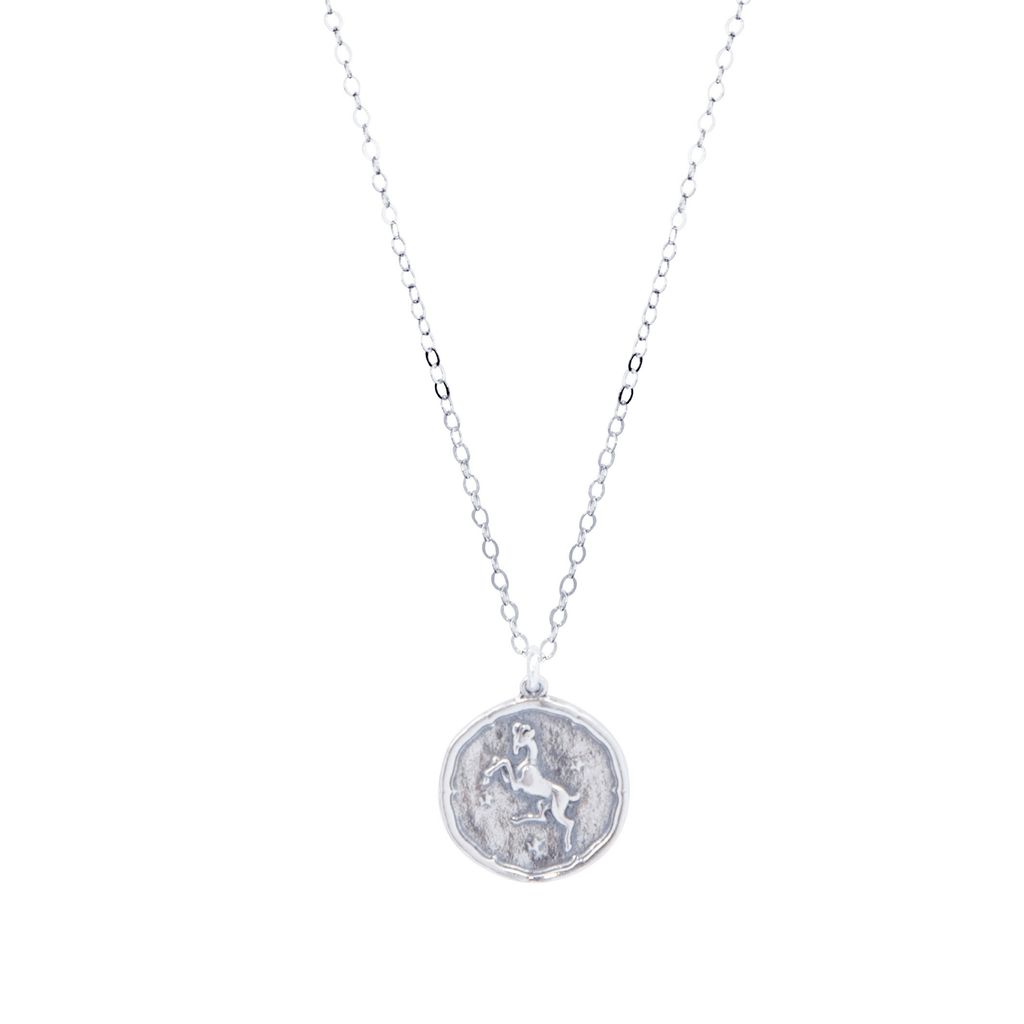 Aries Zodiac Necklace in Silver-Necklaces-Waffles & Honey Jewelry-Waffles & Honey Jewelry