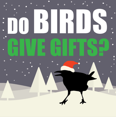 Do Birds Give Gifts?