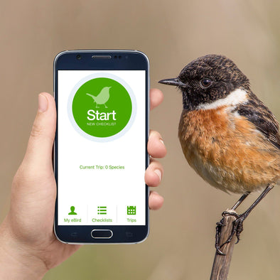 5 Reasons Why You Should Be Using eBird