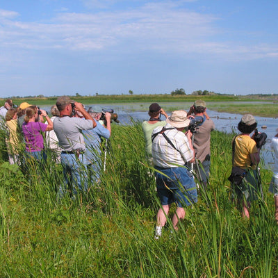 Why You Should Attend a Your First Birding Festival