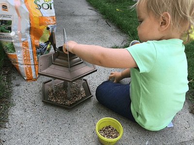 Bird Feeding is an Immersive Activity to Try With Your Kids