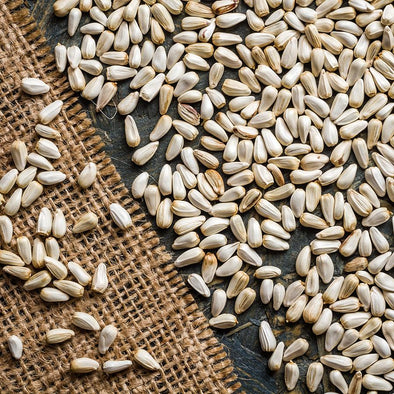 All About Safflower Seed