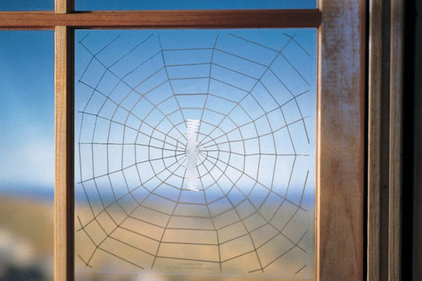 window decal of spider web