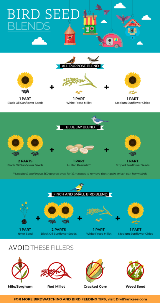 Infographic about seed blends for bird feeding