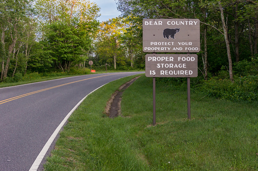 Sign for bear country