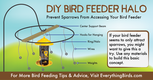DIY Bird feeder halos