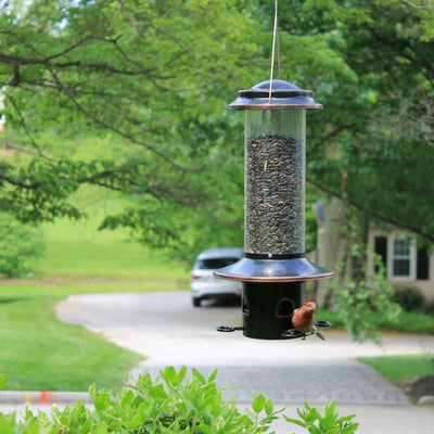 Squirrel-X™ MX5 Squirrel-Resistant Bird Feeder with Spring-Loaded Perches, 3.4 lb. capacity
