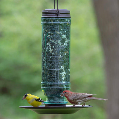 More Birds® Songbird Vintage Glass Combination Sunflower/Thistle Bird Feeder, 1.5 lb. capacity
