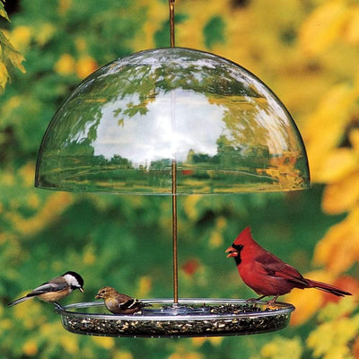 Droll Yankees® Dorothy's Cardinal Bird Feeder with Adjustable Dome, 1 lb. capacity