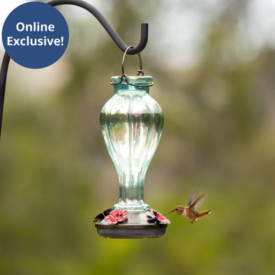 More Birds® Candy Blossom Hummingbird Feeder with Glass Bottle, 25 oz. capacity Bird Feeder More Birds