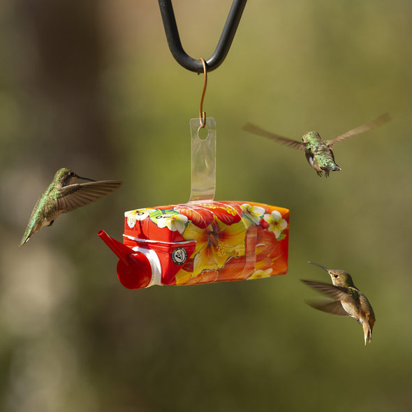 EZNectar® Happy Hummers!® Pre-Filled Fast-Feeder™ Disposable Hummingbird Feeder