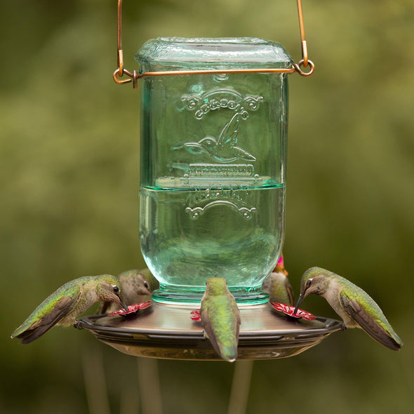 hummingbirds feeding from More Birds Mason Jar Hummingbird Feeder