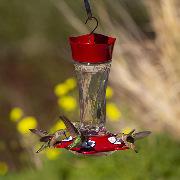 hummingbirds feeding from More Birds Twist Hummingbird Feeder
