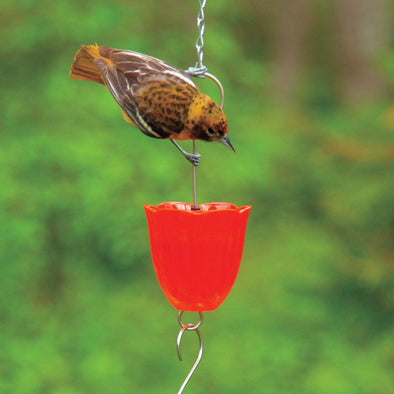 Droll Yankees® Orange Ant Moat for Oriole Feeders