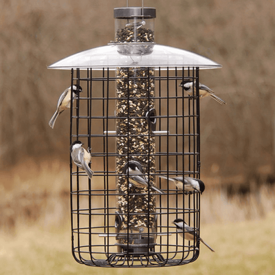 Droll Yankees® Squirrel-Proof Caged Sunflower Bird Feeder, 2.5 lb capacity, 20 in.