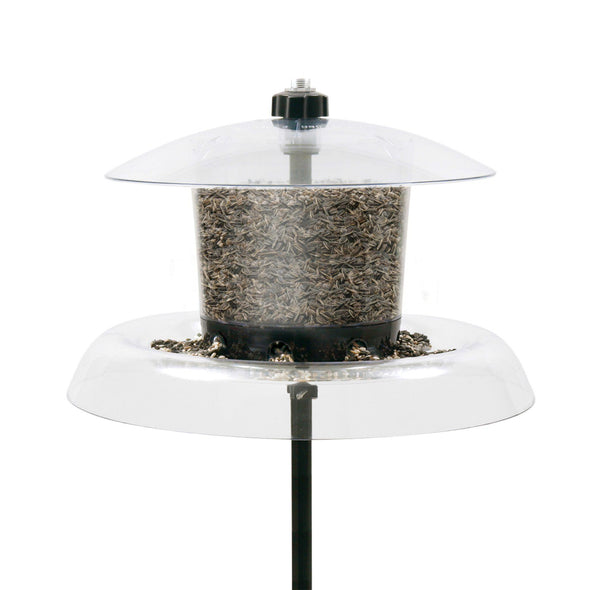 close-up of Droll Yankees Jagunda Bird Feeder filled with sunflower seed
