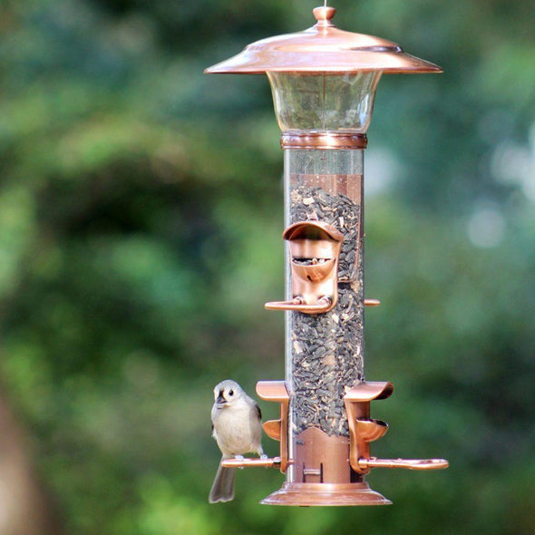 tufted titmouse feeding from More Birds radiant songbird feeder