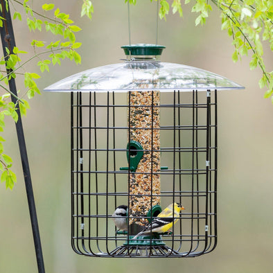 Droll Yankees® New Generation® Green Sunflower Caged Bird Feeder, 1 lb. capacity, 23 in. diameter Bird Feeder Droll Yankees