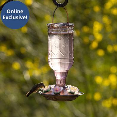 More Birds® Amethyst Jewel Hummingbird Feeder with Glass Bottle and Plastic Ports, 20 oz. capacity