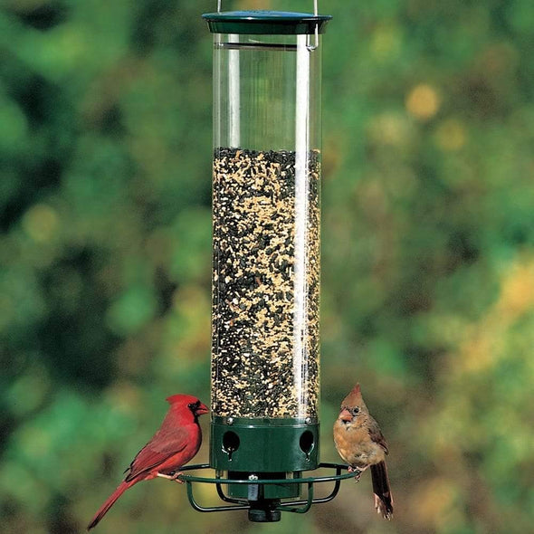 cardinals eating from Droll Yankees Yankee Flipper Squirrel-Proof Bird Feeder