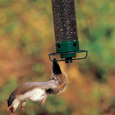 squirrel falling from Droll Yankees Yankee Flipper Squirrel-Proof Bird Feeder