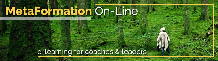 On-line Coaching Courses