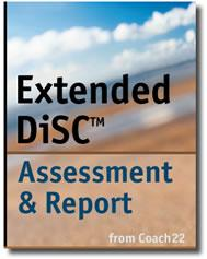 Copy of DISC Assessment and Report