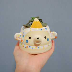 Party Bear Pot