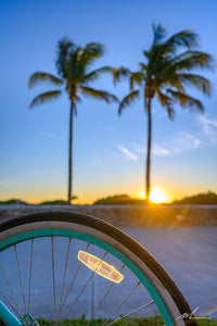 Sunrise and a bicycle with palm trees
