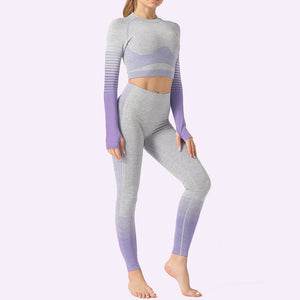 Lena 2 Pcs Seamless Yoga Set