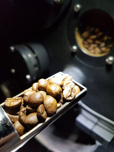 Roasting coffee beans in the pourista coffee roastery