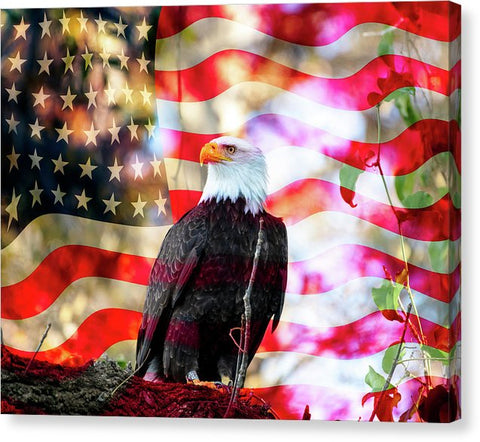 American Eagle - Canvas Print