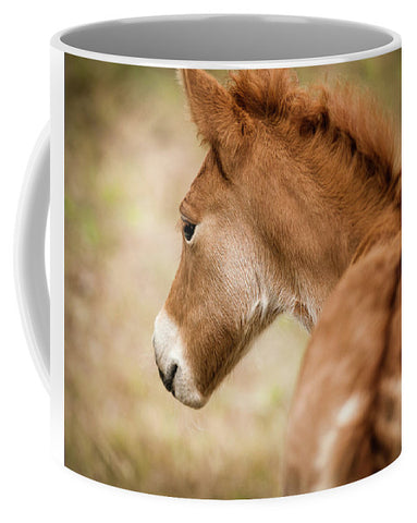 Chincoteague Pony Foal - Mug