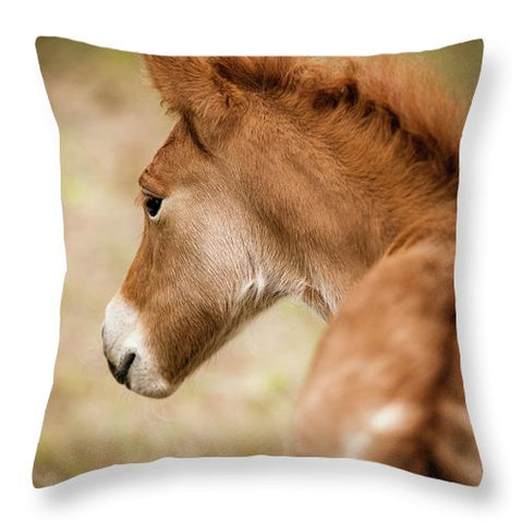 Chincoteague Pony Foal - Throw Pillow
