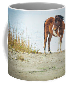 Chingoteague Pony On The Beach - Mug