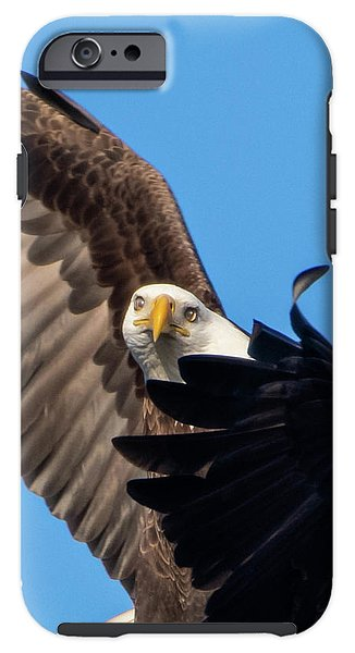 Eagle Mesmerized In Flight - Phone Case
