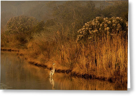 Early Morning In Chincoteague - Greeting Card