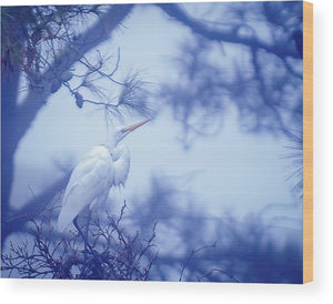 Egret On A Foggy Morning - Wood Print