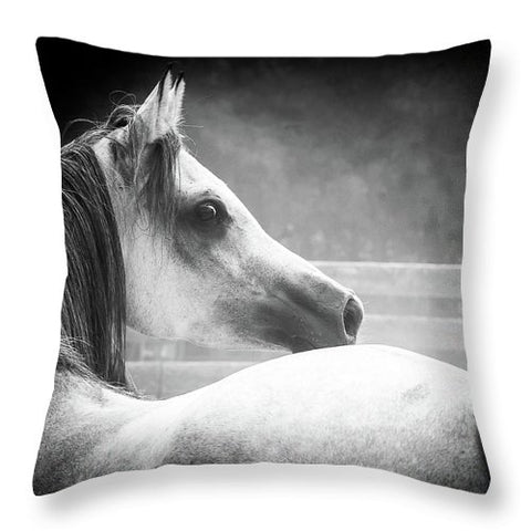 Grey Arabian In Black And White - Throw Pillow