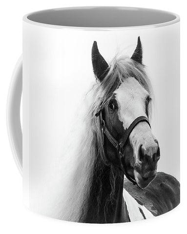 Gypsy Cob Paint - Mug