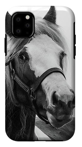 Gypsy Cob Paint - Phone Case
