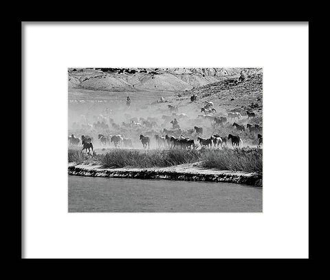 Horses in the Desert Dust - Framed Print