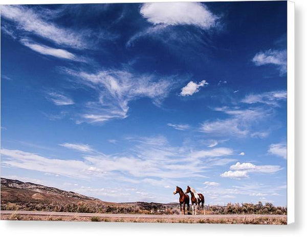 Horses in Waiting - Canvas Print