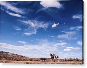 Horses in Waiting - Acrylic Print