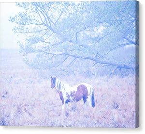 Looking Through The Fog - Canvas Print
